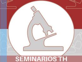 Seminarios TH