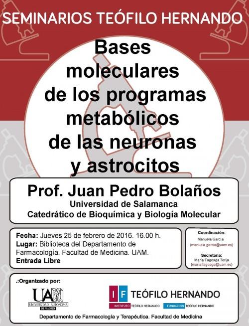 SEMINARIO TH-25.02.2016 -Juan Pedro Bolaños-