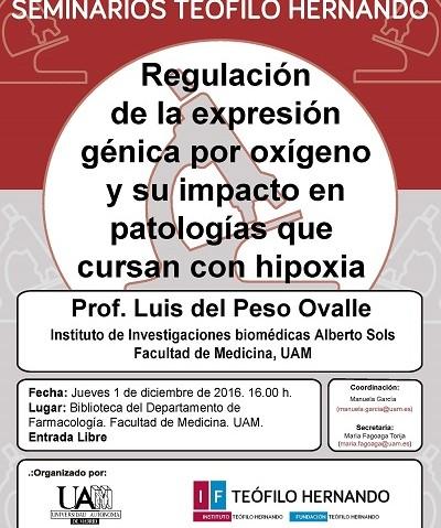 SEMINARIO TH-1 diciembre-Dr. Luis del Peso Ovalle-400